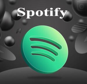 Buy 1000 Spotify Followers