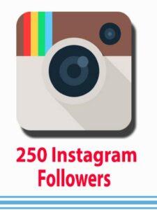 Buy-250-Instagram-Followers