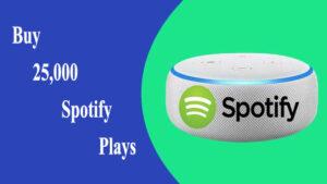 Buy 25,000 Spotify Plays