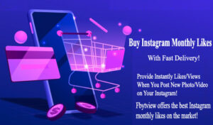 Buy Instagram Monthly Likes