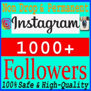 buy-1000-instgram-followes